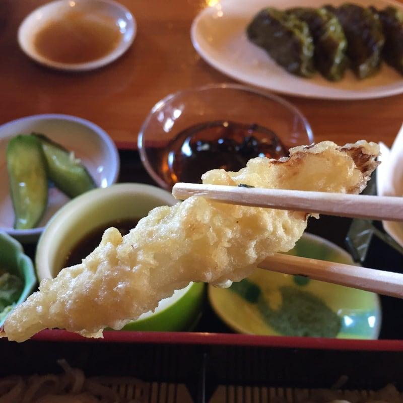 農家レストラン ゆう菜家 美人三色めんざるセット 天ぷら
