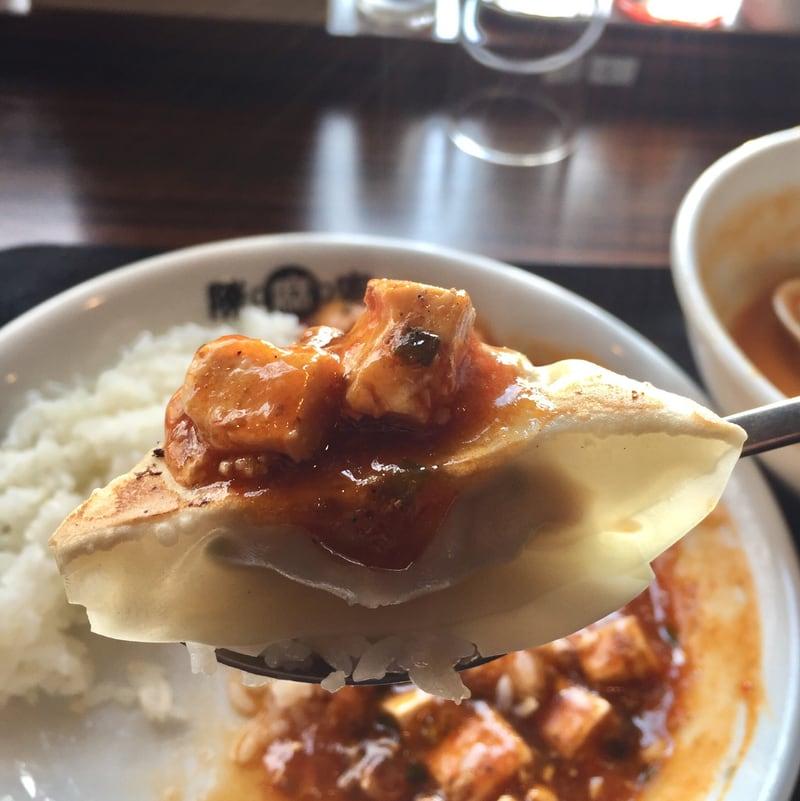 陳麻家 秋田外旭川店 焼き餃子