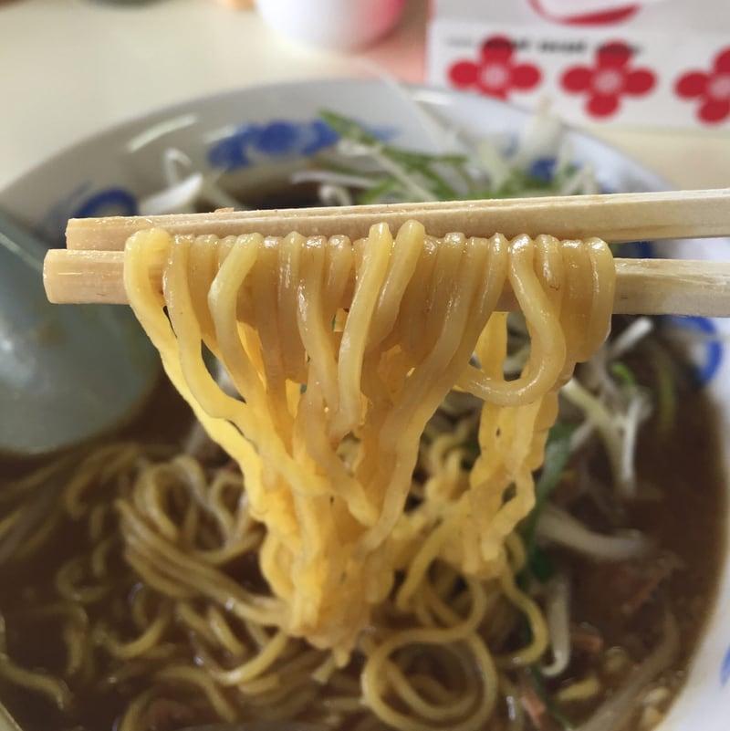 長谷川食堂@秋田市仁井田 ホルモンラーメン 麺