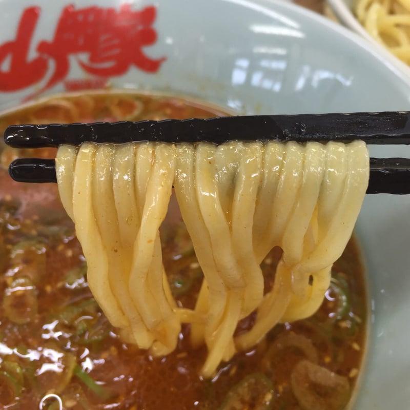 ラーメン山岡家 秋田仁井田店 辛味噌つけ麺 麺