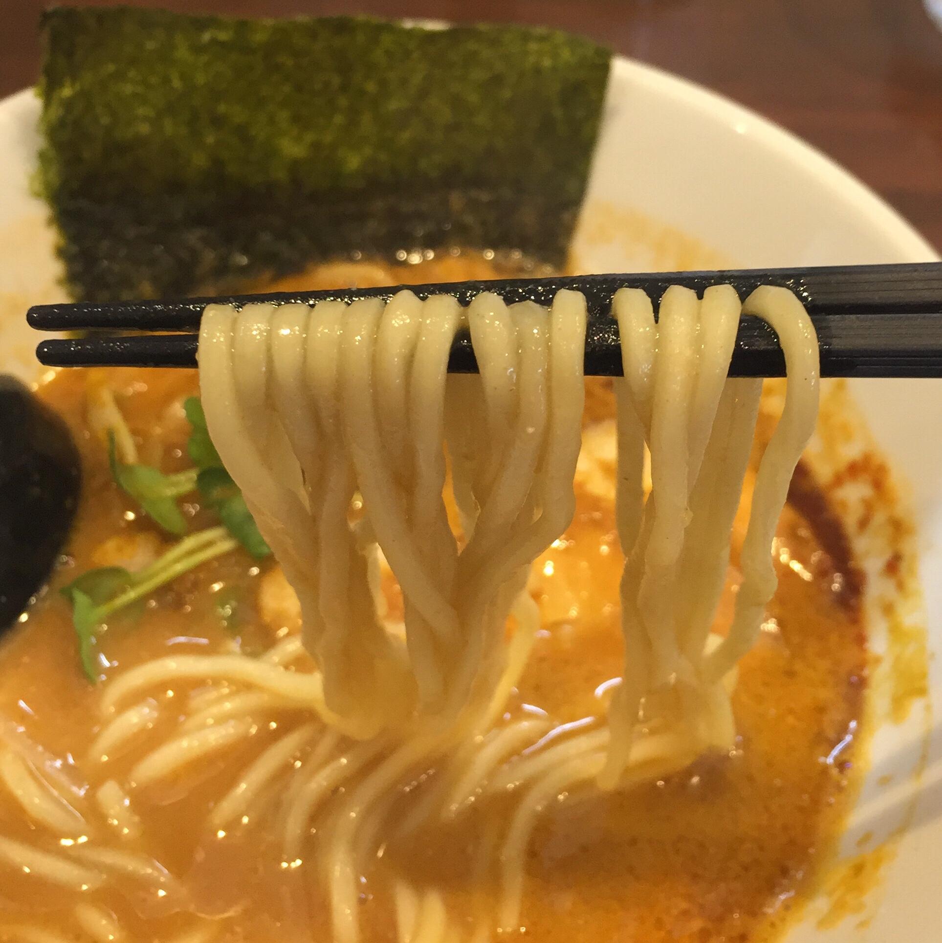 NOODLE SHOP KOUMITEI(香味亭) オマール海老香る濃厚ラーメン 濃厚味噌カレーヌードル 麺