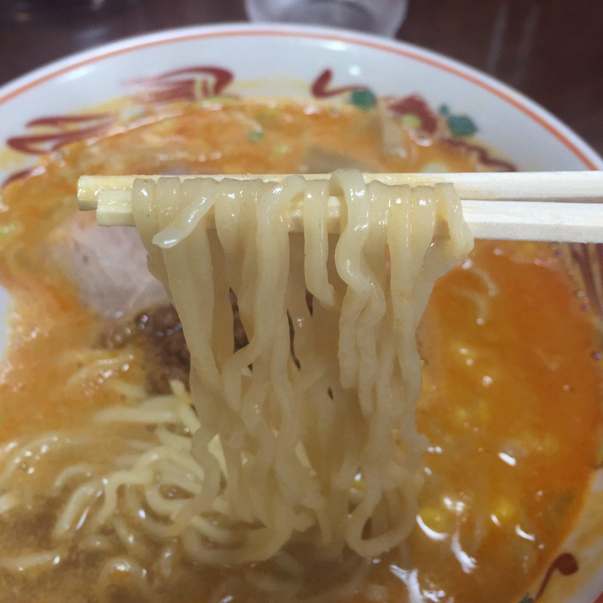 担々麺の店 福の家北店 担々麺 麺