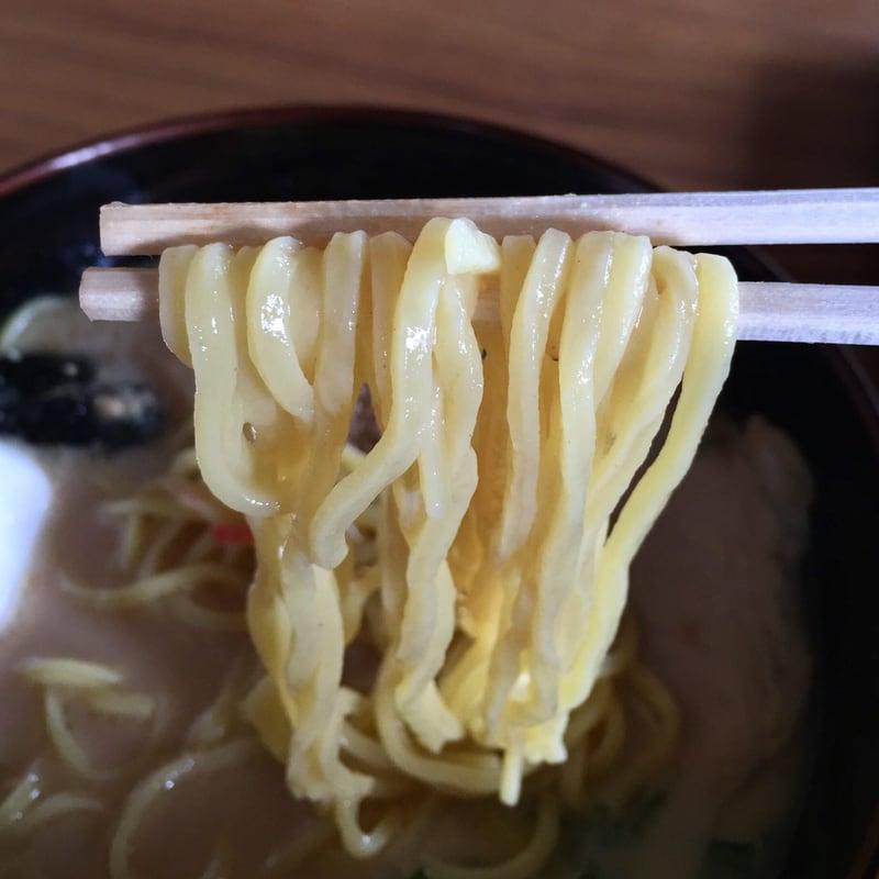 食堂二十番 秋田県大仙市太田町 特製豚骨麺 豚骨ラーメン 麺