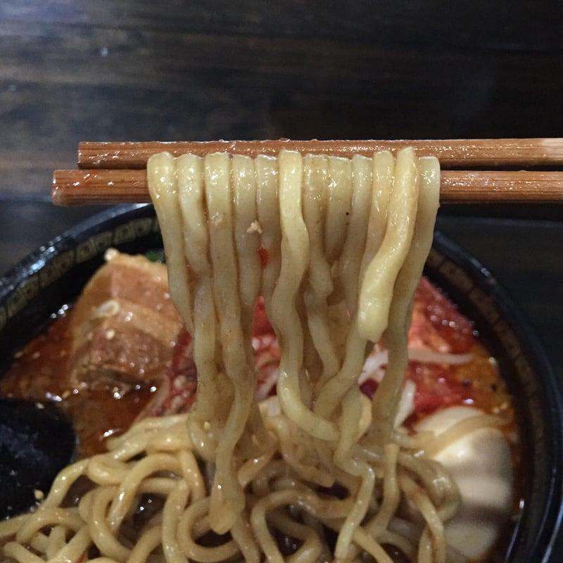 トラガス。 秋田県湯沢市 特製辛みそらーめん 辛味噌ラーメン 麺