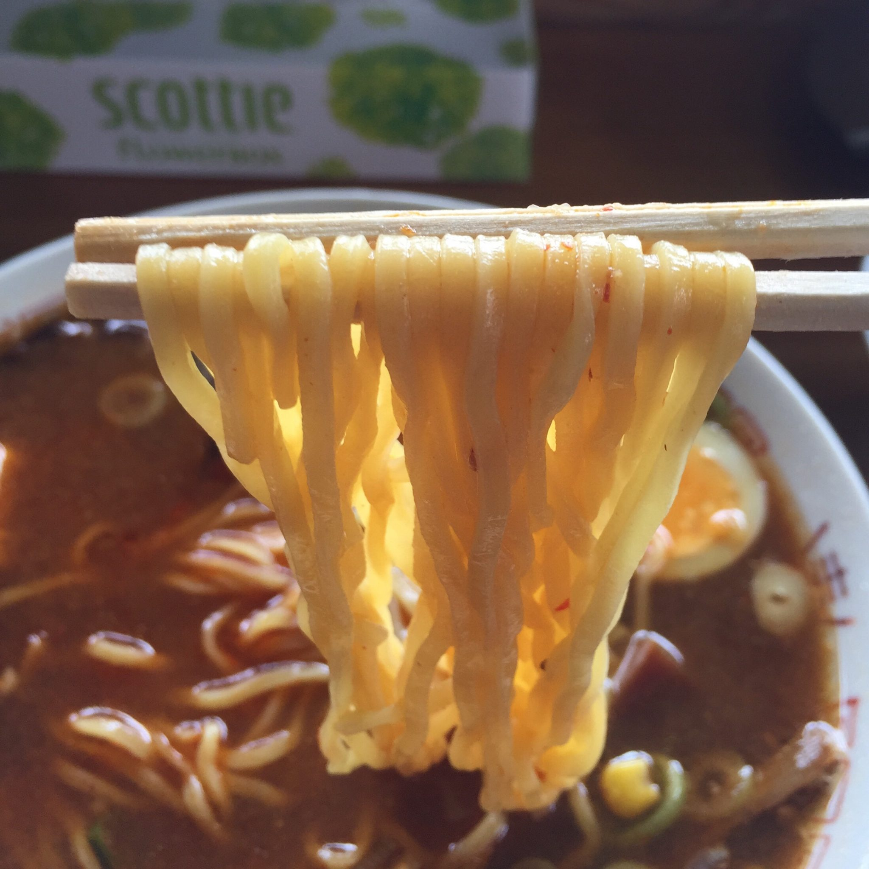 ラーメンたつた 龍田 秋田県能代市 ピリカラみそラーメン ピリ辛味噌ラーメン 麺