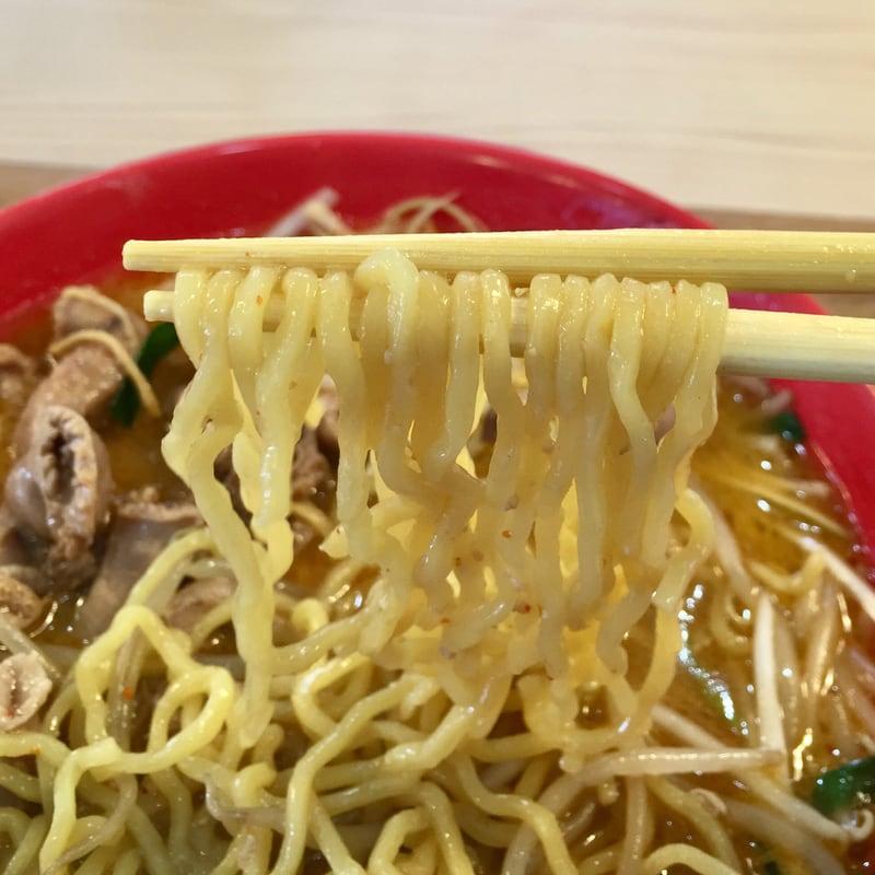 二代目 男寿狼 秋田県横手市 鶏もつ味噌ラーメン 麺