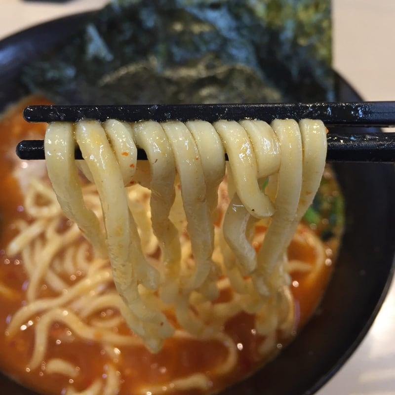 麺屋 新月 秋田県由利本荘市 河内家カラシビ味噌改 麺