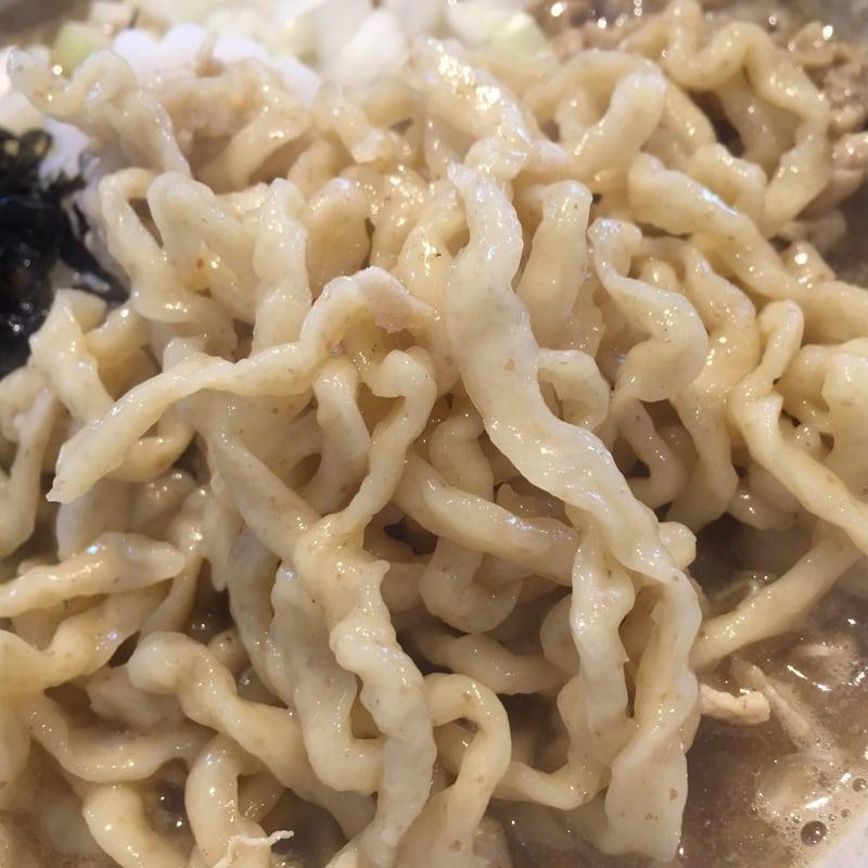 新旬屋本店 山形県新庄市 鶏煮干し中華 麺