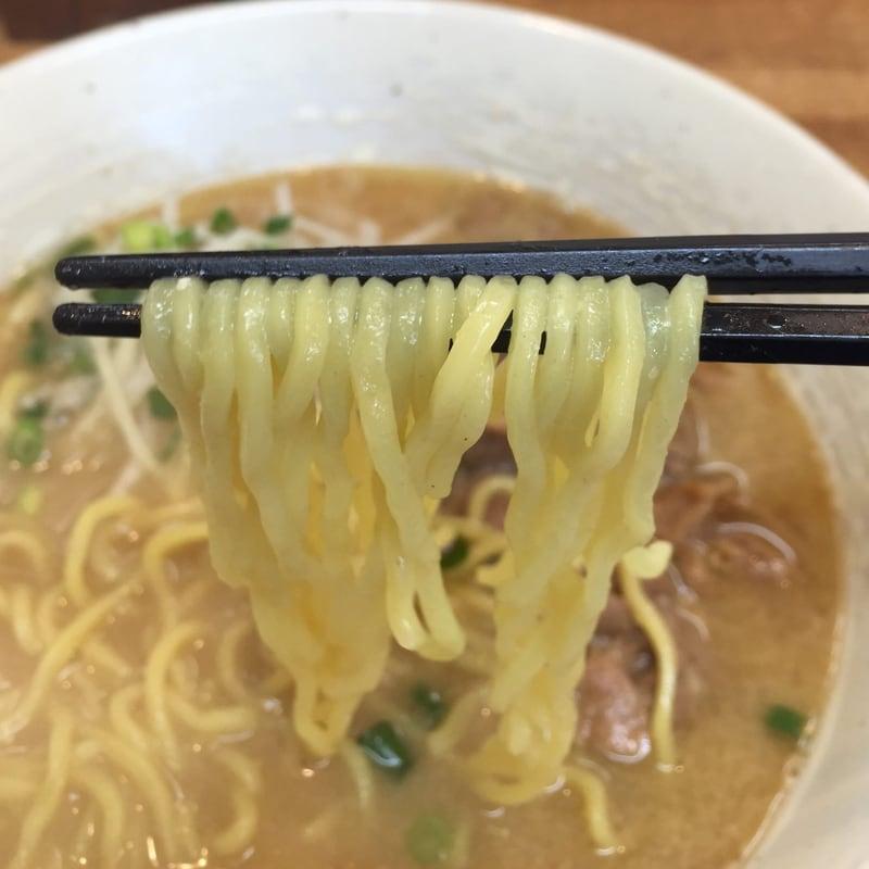 支那そば まき 秋田県秋田市下新城 モツそば 味噌味 麺