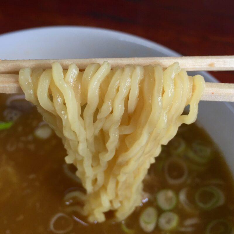 食堂 清和亭 せいわてい 秋田県由利本荘市井戸尻 みそホルモンラーメン 麺