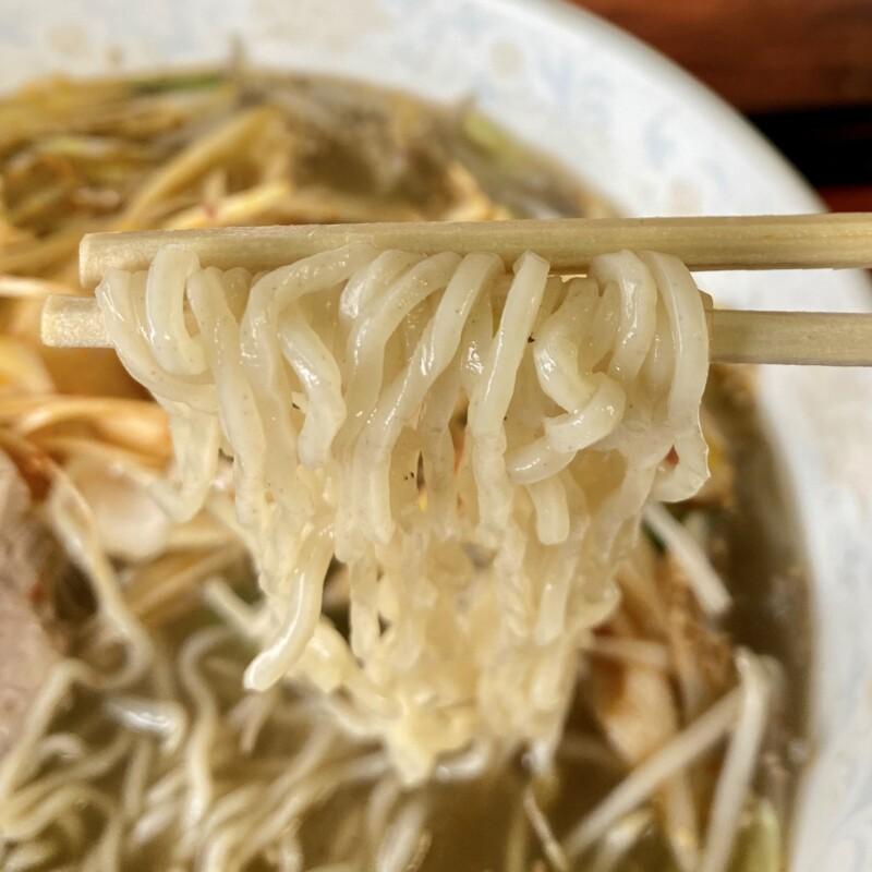 麺家 秀吉 秋田県横手市朝日が丘 辛口塩ネギ野菜ラーメン 麺