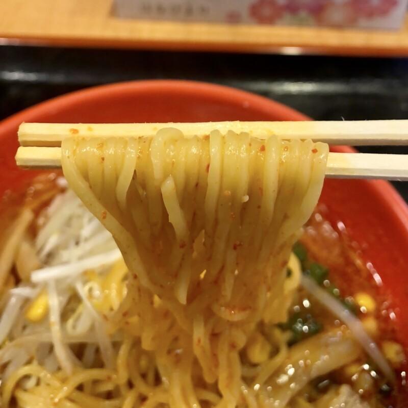味噌家 がんこ亭 岩手県北上市村崎野 赤鬼とうがらし味噌ラーメン 3辛 麺