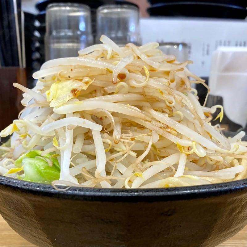 麺屋 羅漢 らかん 秋田県横手市条里 羅漢ラーメン 大盛 野菜増し 具