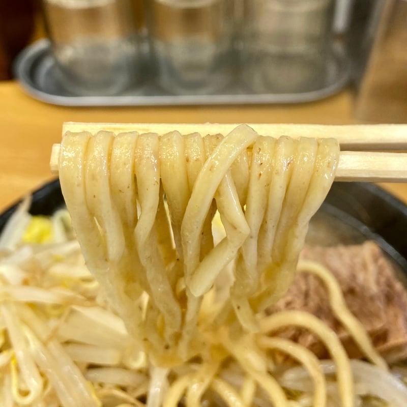 麺屋 羅漢 らかん 秋田県横手市条里 羅漢ラーメン 大盛 野菜増し 自家製麺